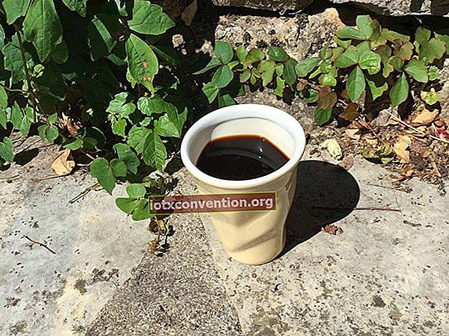 Endlich eine wiederverwendbare, wirtschaftliche und ökologische Kaffeekapsel!