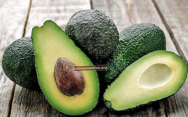 Tipset för att mogna en avokado på 1 natt.