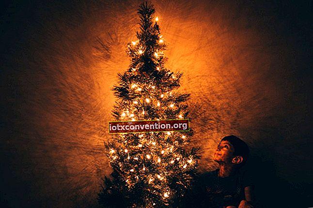2 tips för att göra ditt julgran längre.
