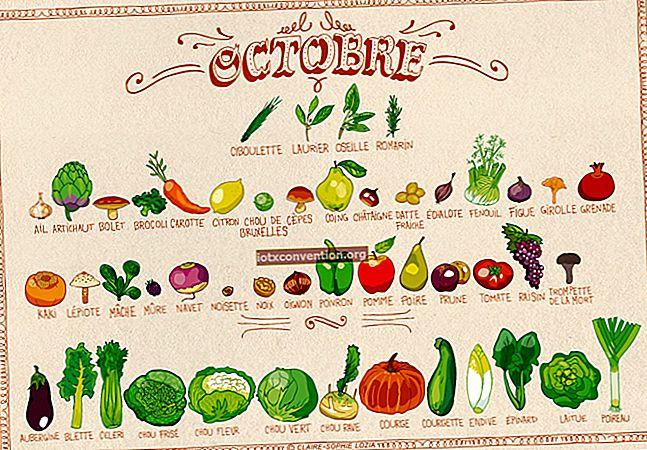 Säsongens frukt och grönsaker för mars månad.