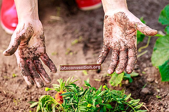 Cara Mudah Membersihkan Tangan Setelah Berkebun.