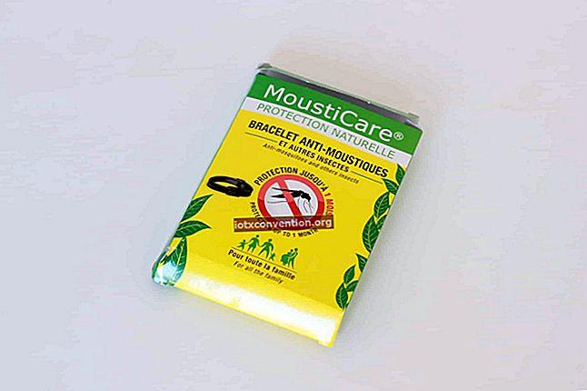 Das Basilikum-Abwehrrezept Alle Insekten HASSEN.