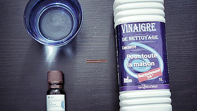 Die 3 besten Tipps zur Reinigung von tierischem Urin auf Ihren Teppichen.