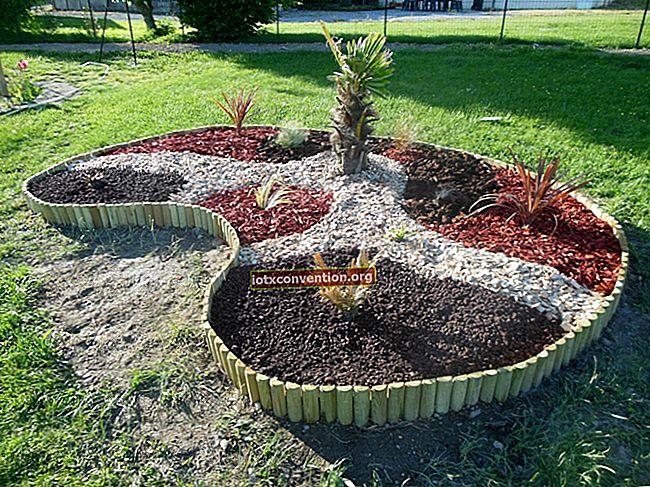 11 splendidi bordi del giardino che vorresti avere a casa.