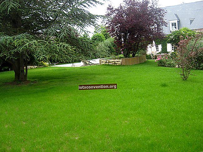 簡単な芝刈りのための信じられないほどのヒント。
