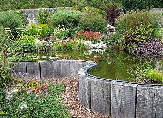 28 Grandi idee per il giardino rivelate da un paesaggista.