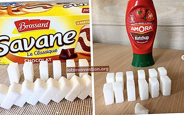 Wie viele Zuckerstücke sind in Ihren Lieblingsprodukten enthalten?