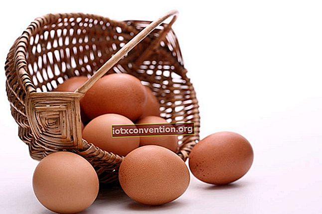 Konservera äggulor: mitt tips för att bevara dem.
