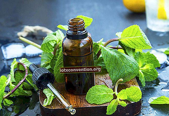 3 Wirksame ätherische Öle für den natürlichen Gewichtsverlust.