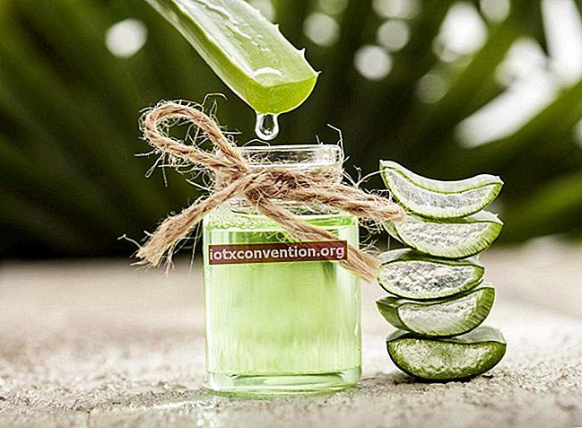 Niente più doposole! Usa l'Aloe Vera per idratare e lenire la tua pelle.